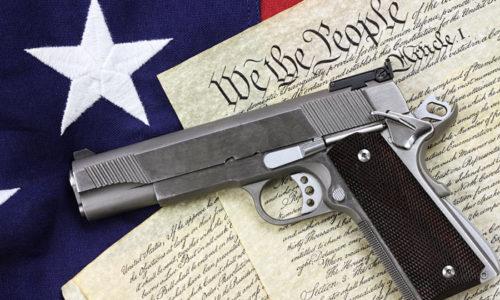 gunConstitution